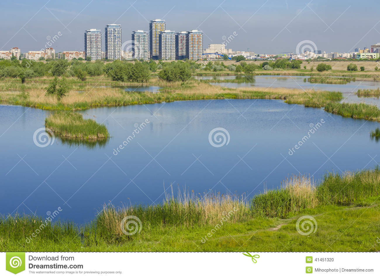 Download City Suburbs With Lake Ecosystem. Stock Photo - Image of lakeside, city: 41451320