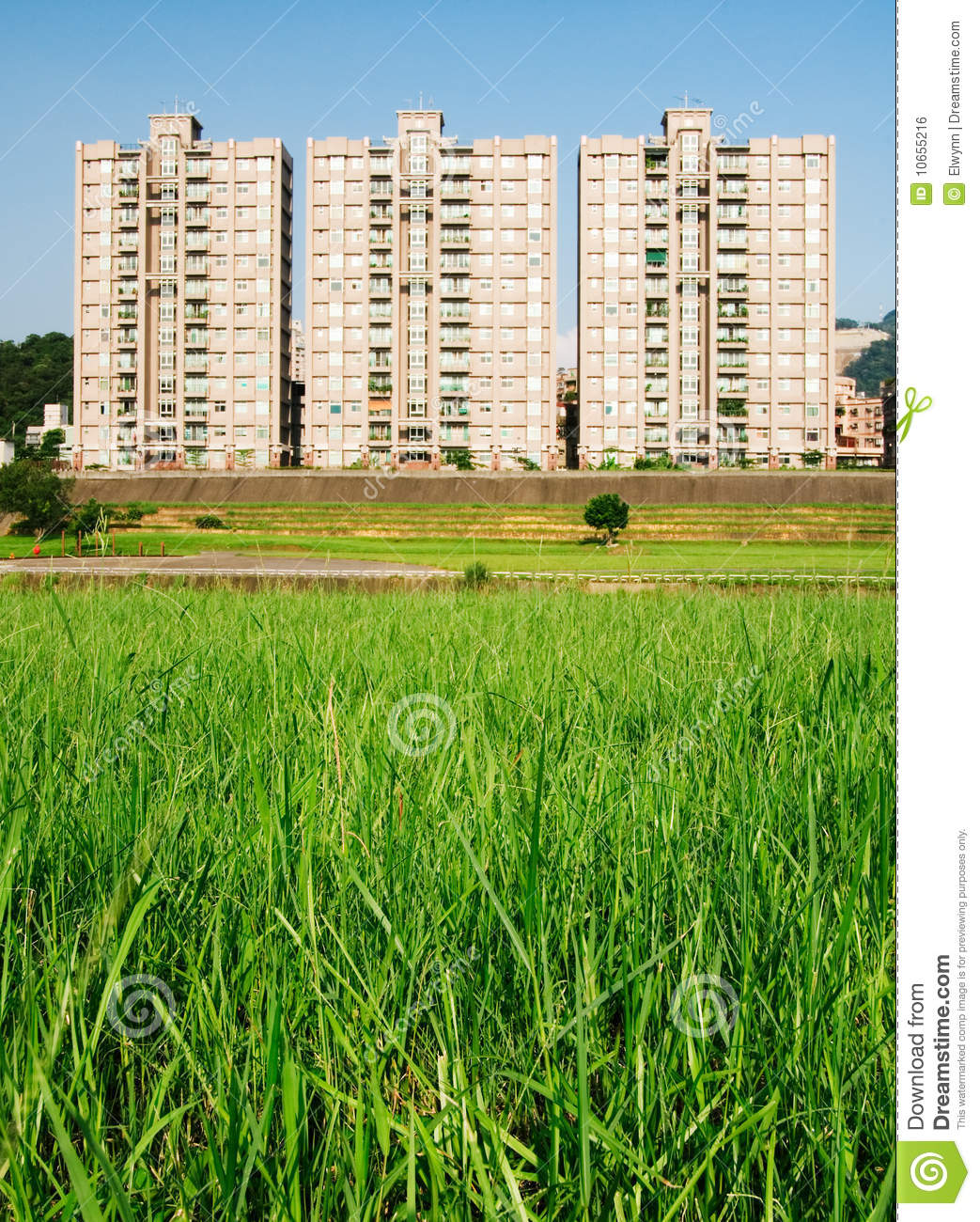 Cityscape Of Apartments With Grassland Stock Photo