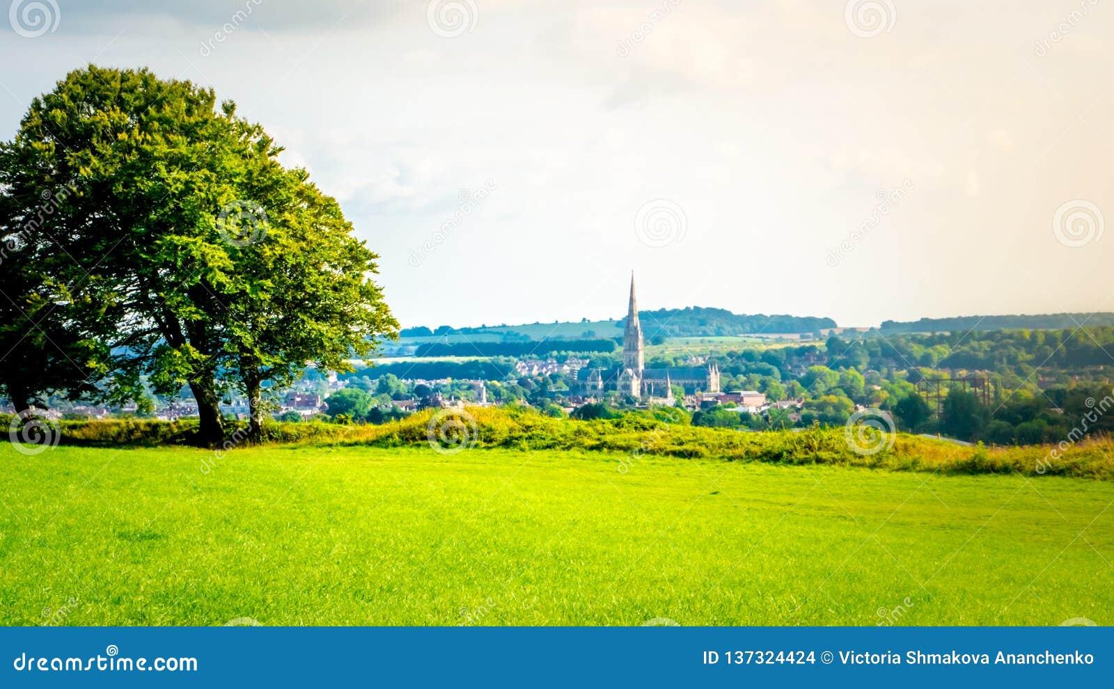 Cityscape av Salisbury med domkyrkan från den gamla Sarumen i Salisbury, UK