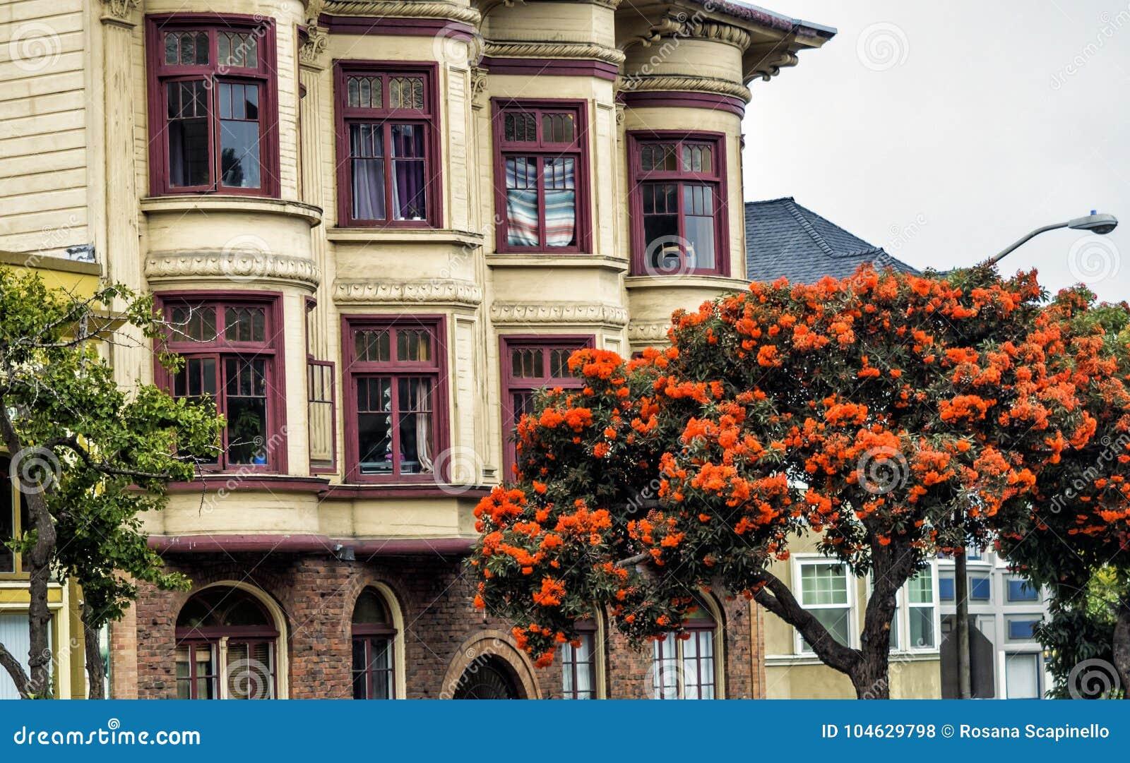 Download Cityscape Van San Francisco, District Haight-Ashbury - San Francisco, Californië, CA Stock Foto - Afbeelding bestaande uit schoen, huizen: 104629798