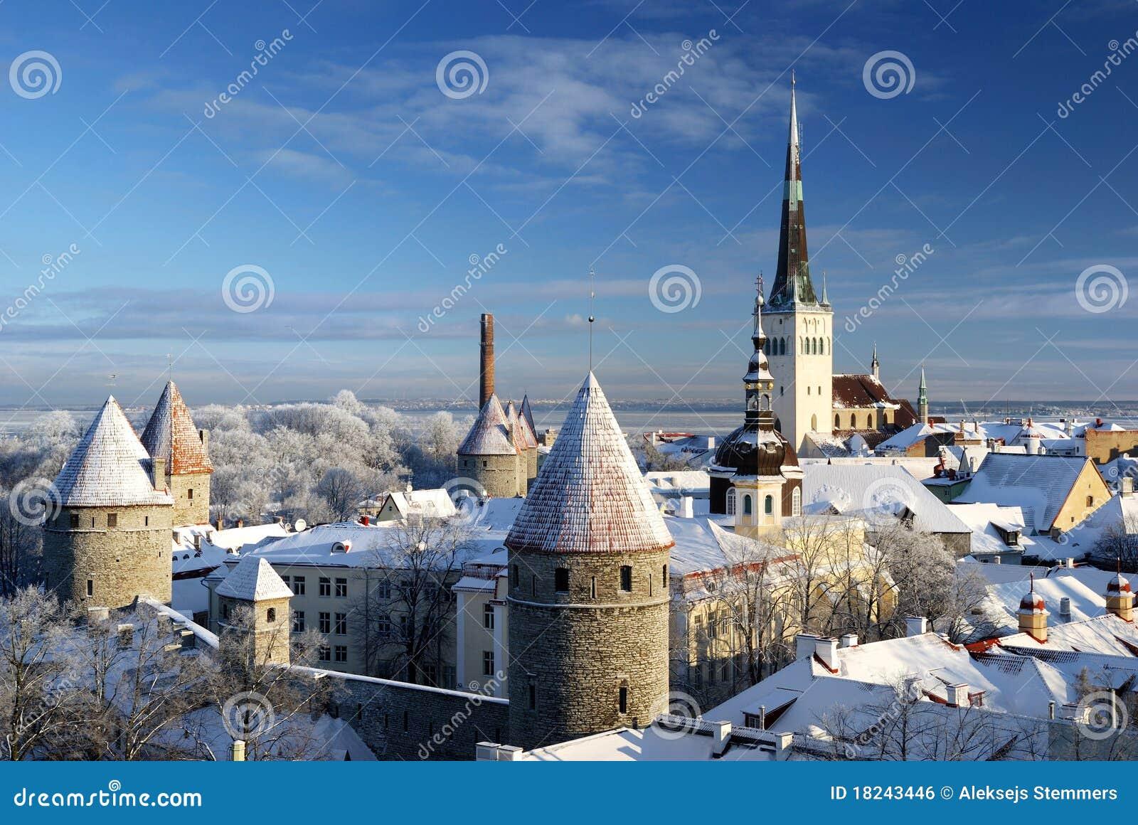 Ciudad de Tallinn. Estonia. Nieve en árboles en invierno