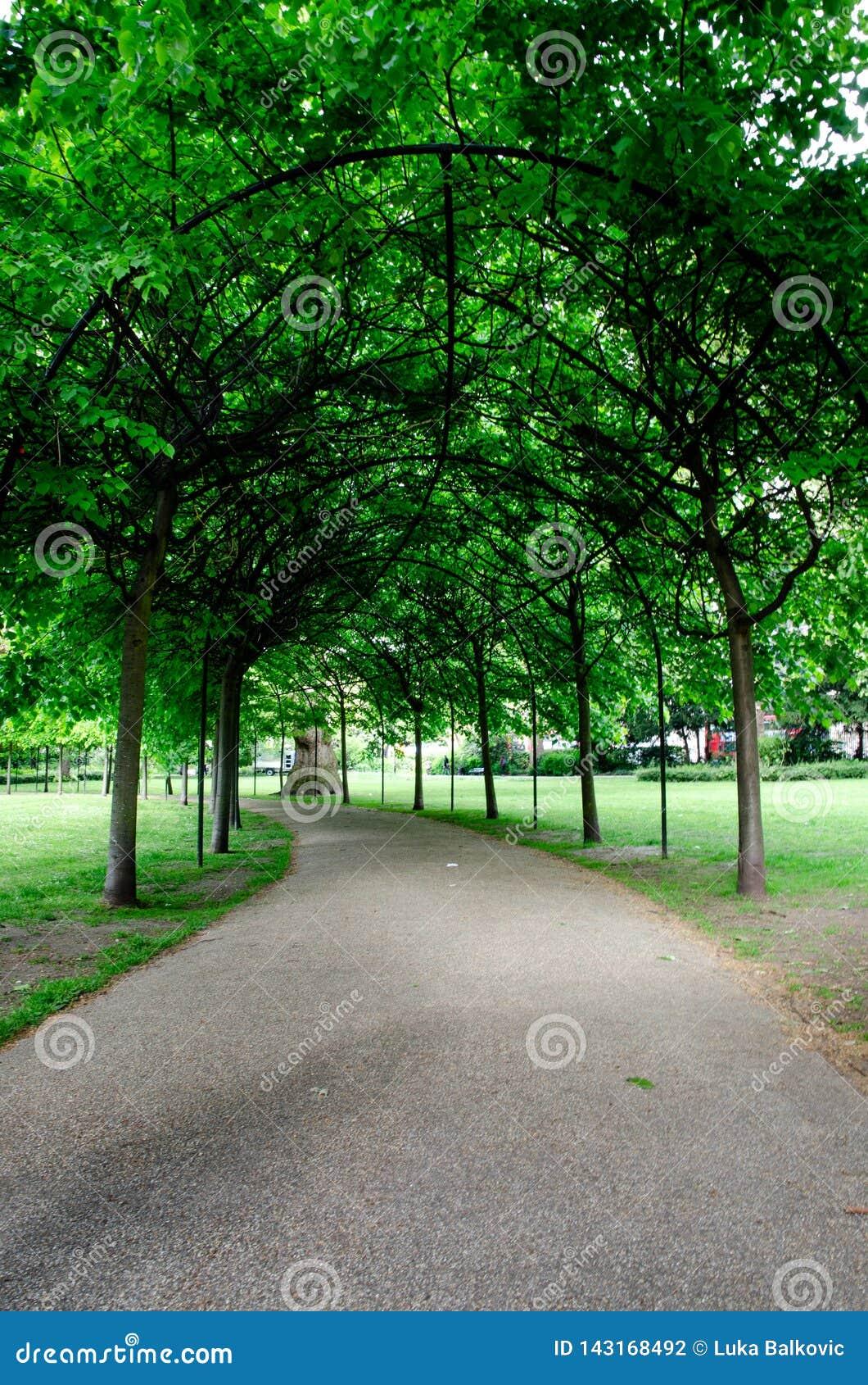 Ciudad/Inglaterra de Londres: Callejón en el parque de Russell Square