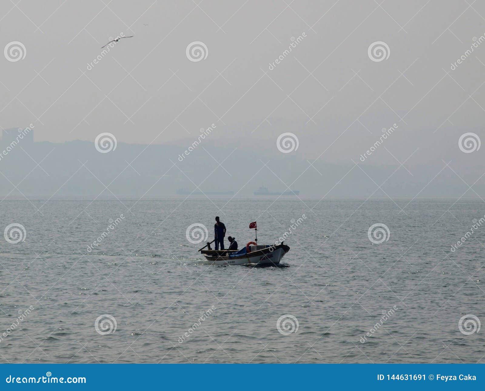Ciudad pesquera azul del pájaro del barco del cazador del mar