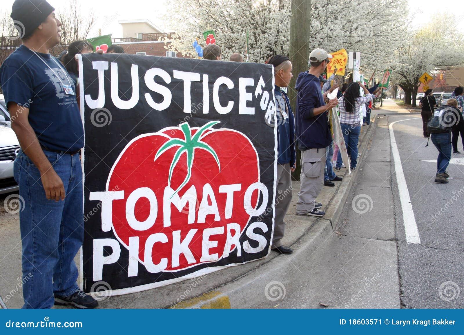 Ciw koalicyjni immokalee protesta pracownicy