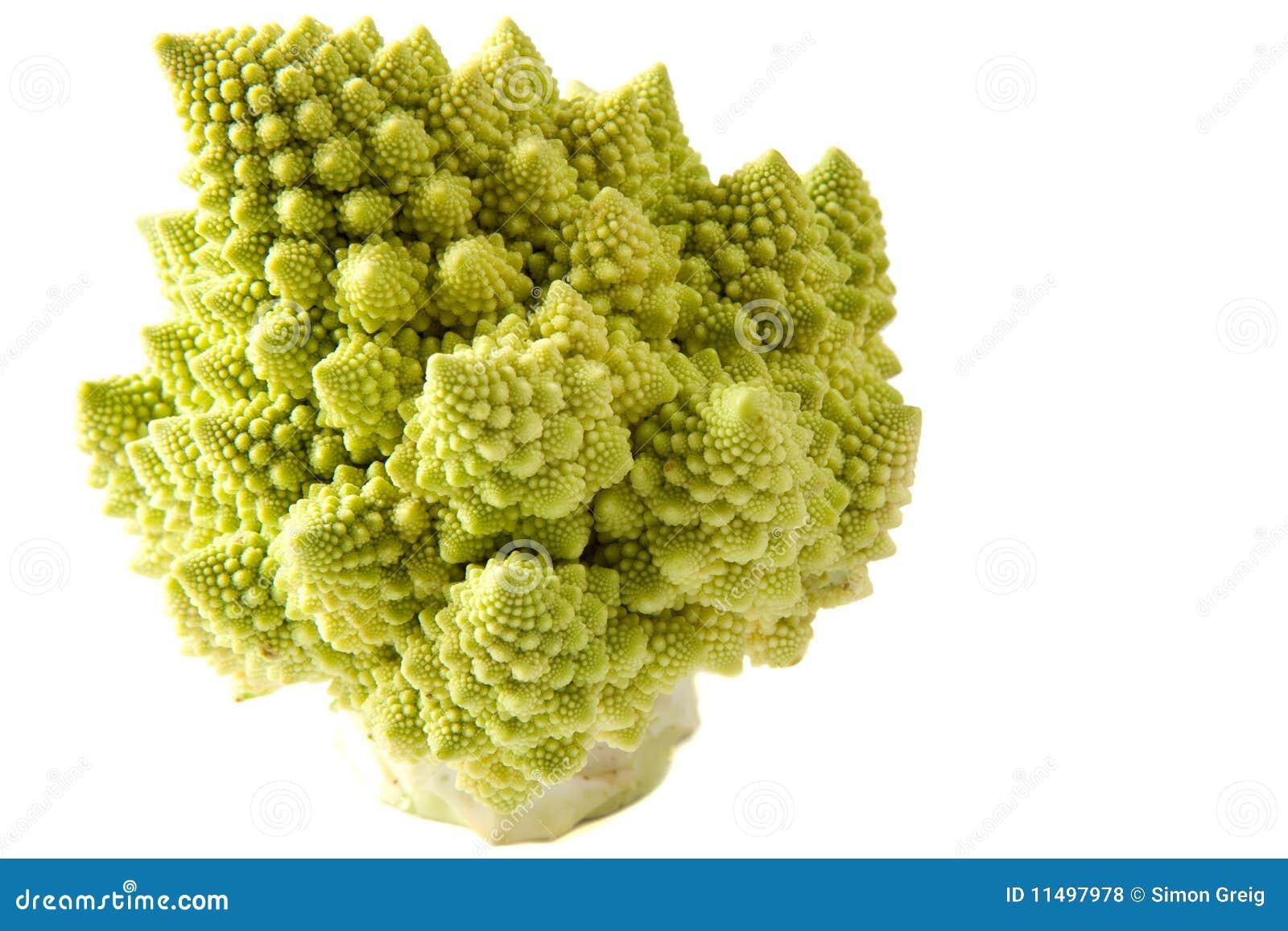 Clé élevée de broccoli de Romanesco