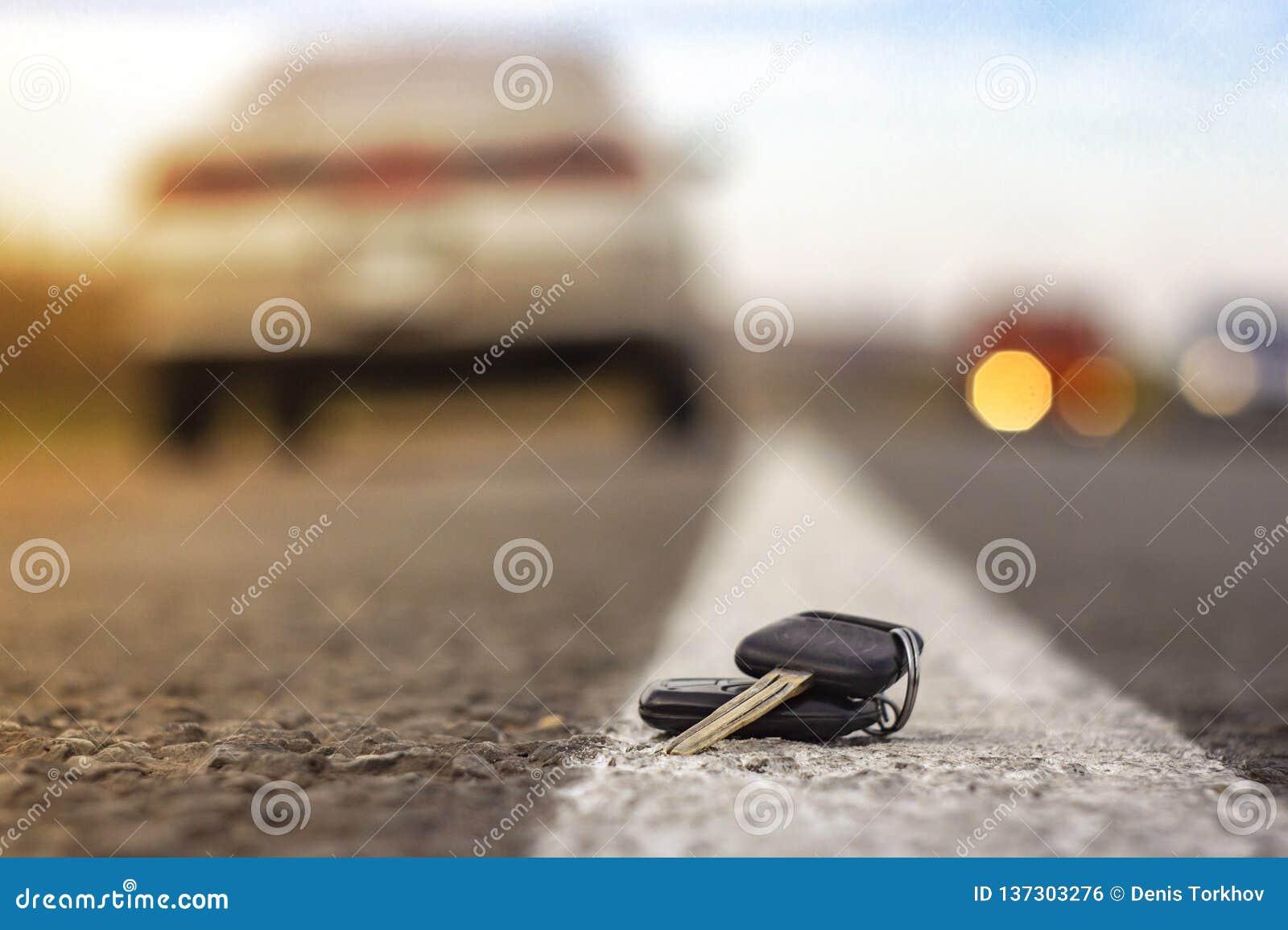 Clés perdues de voiture sur les aiguilles tombées du sapin bleu bokeh arrière de fond de tache floue