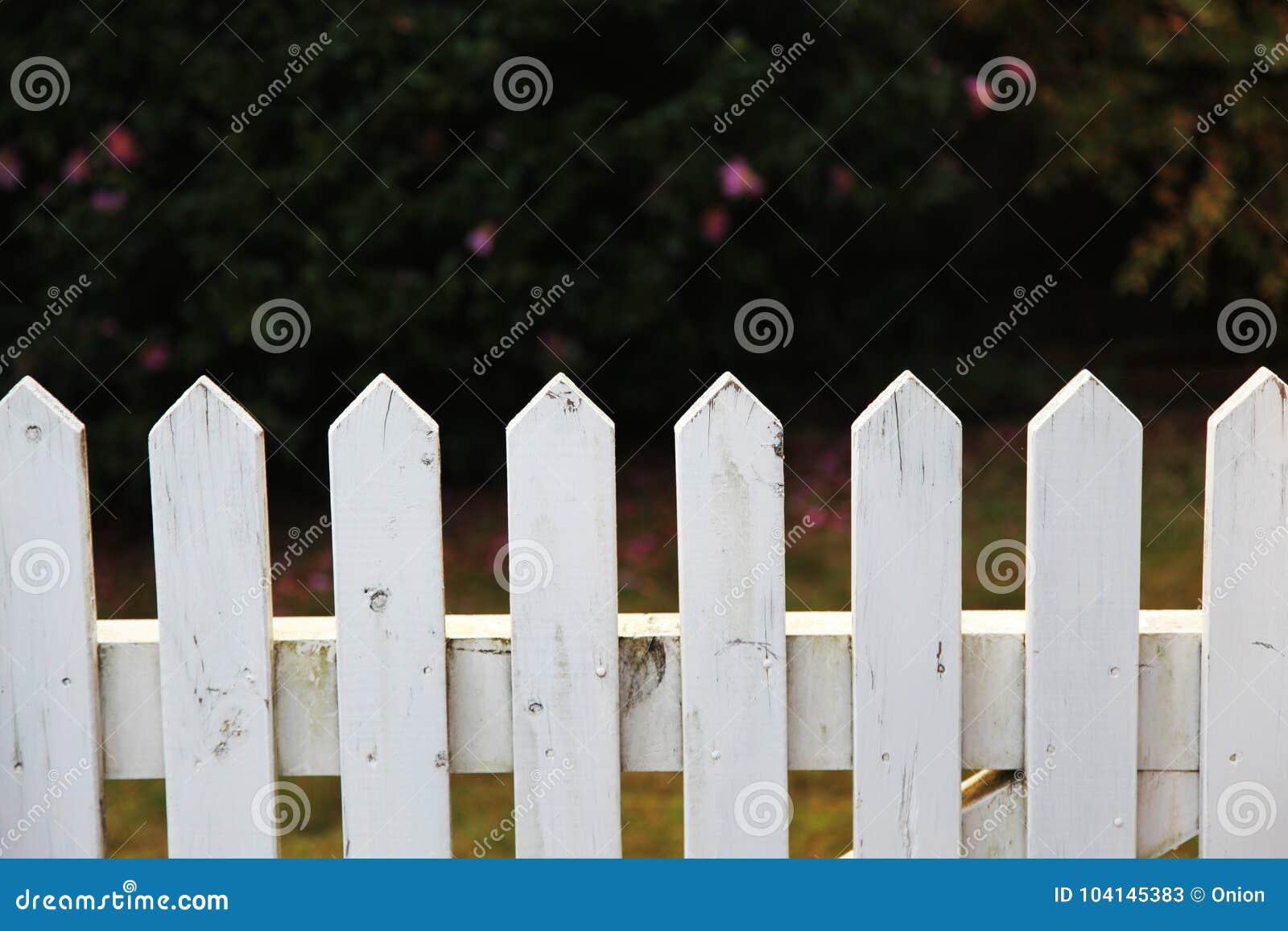 Petite Cloture De Jardin Blanche clôture en bois dans le blanc image stock - image du jardin