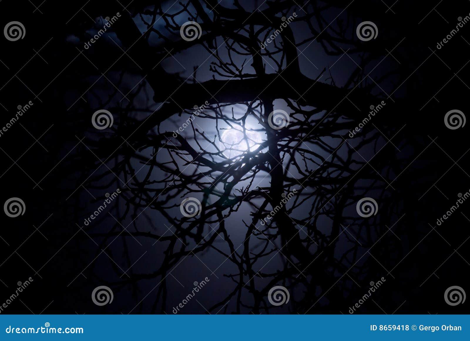Clair de lune de minuit fantasmagorique