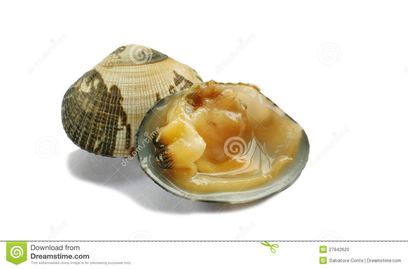 how to cook cockle clams