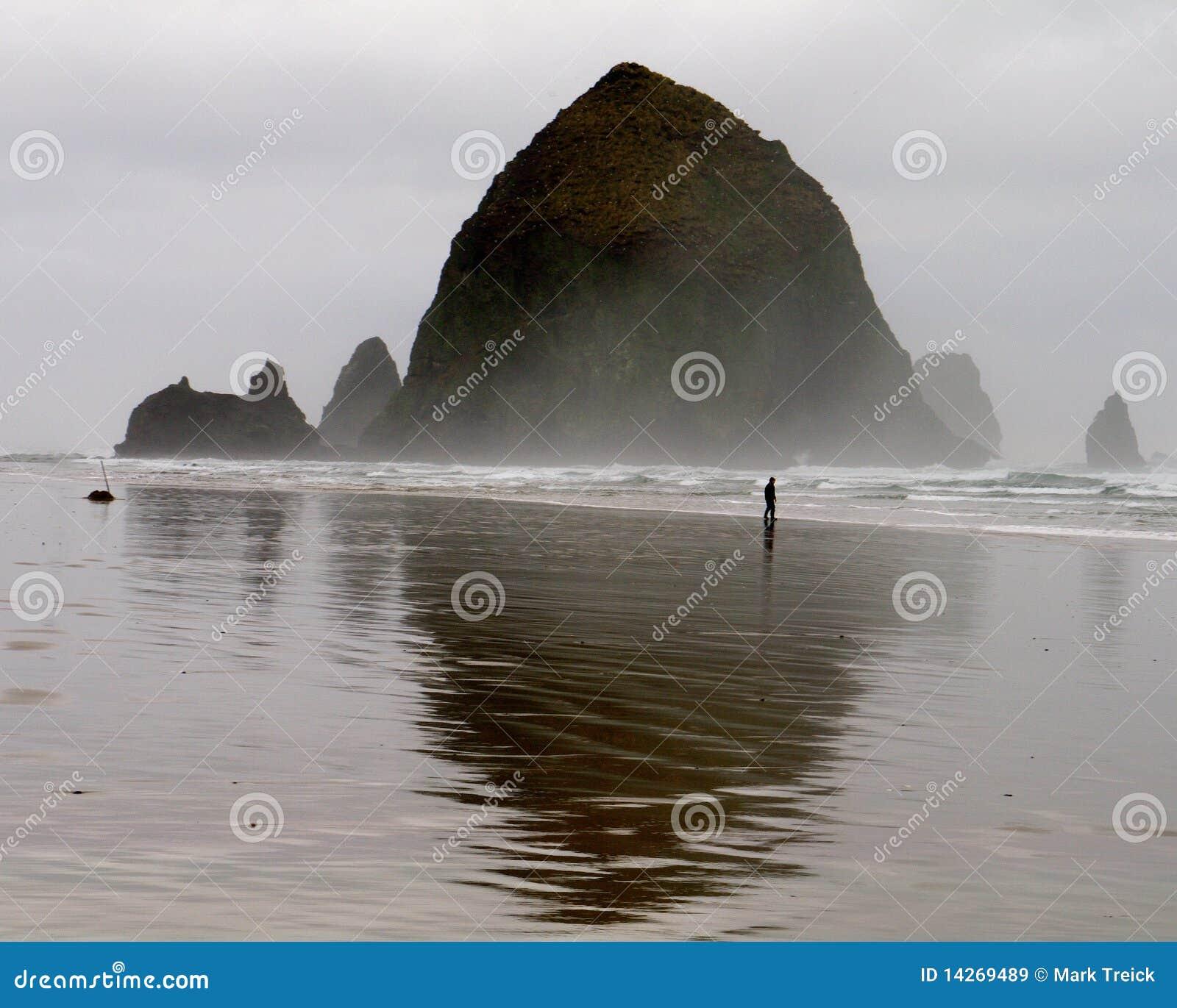 Clamming的海浪