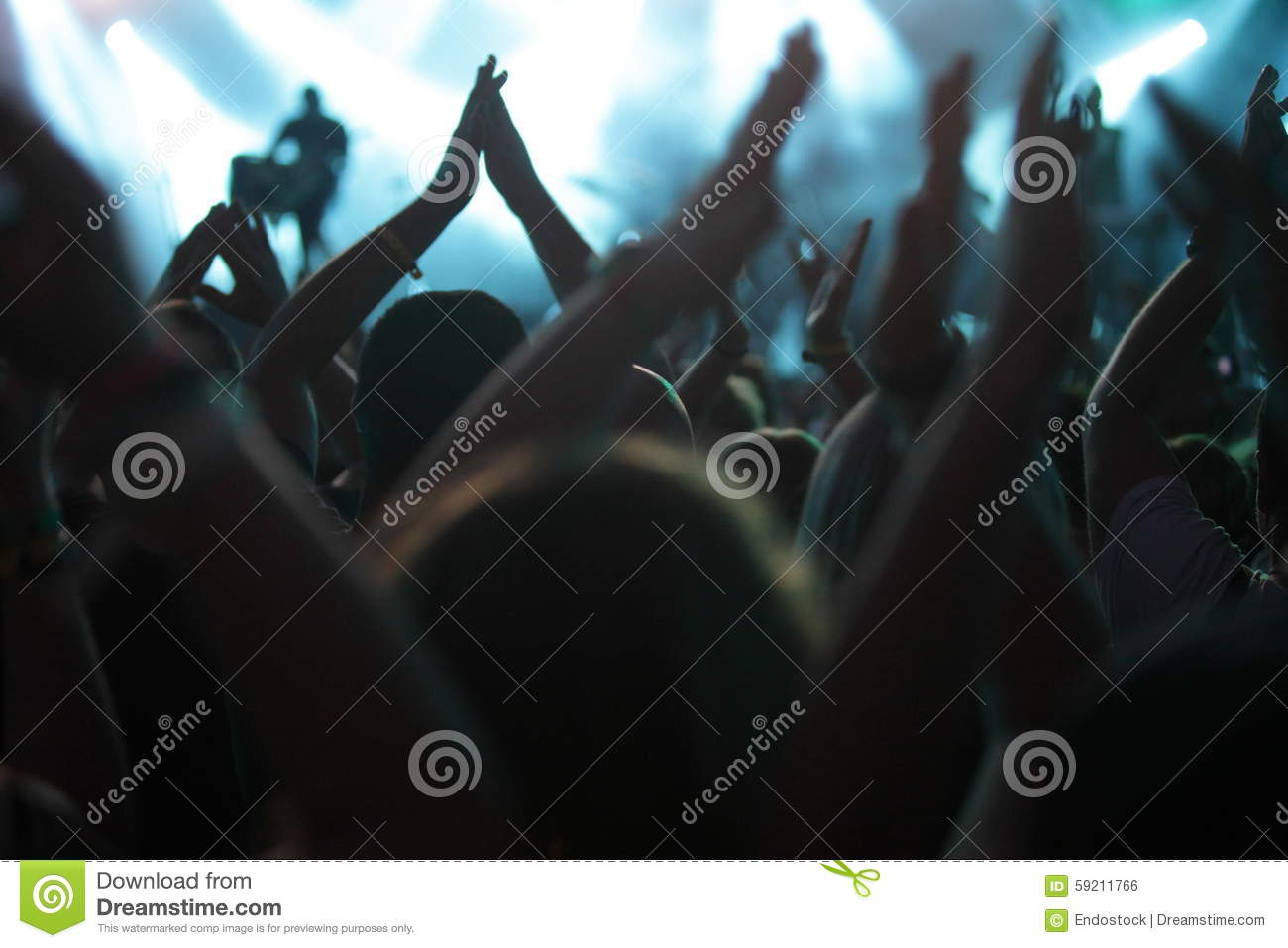 Clapping crowd at the concert