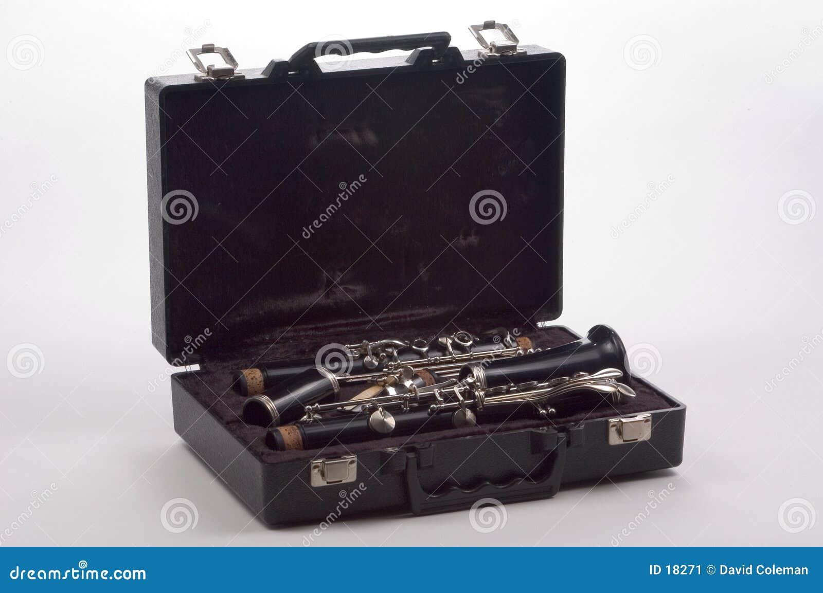 Clarinet nel caso