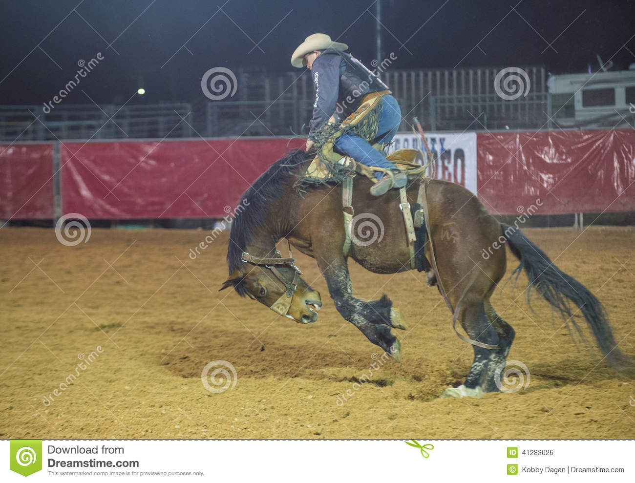 LOGANDALE , NEVADA - APRIL 10 : Cowboy Participating in a Bucking Horse  Competition at the Clark County Fair and Rodeo a Professional Rodeo held in  ...
