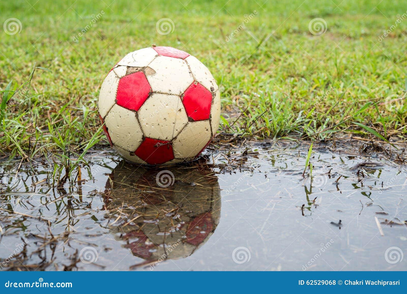 Classic ball football on grass