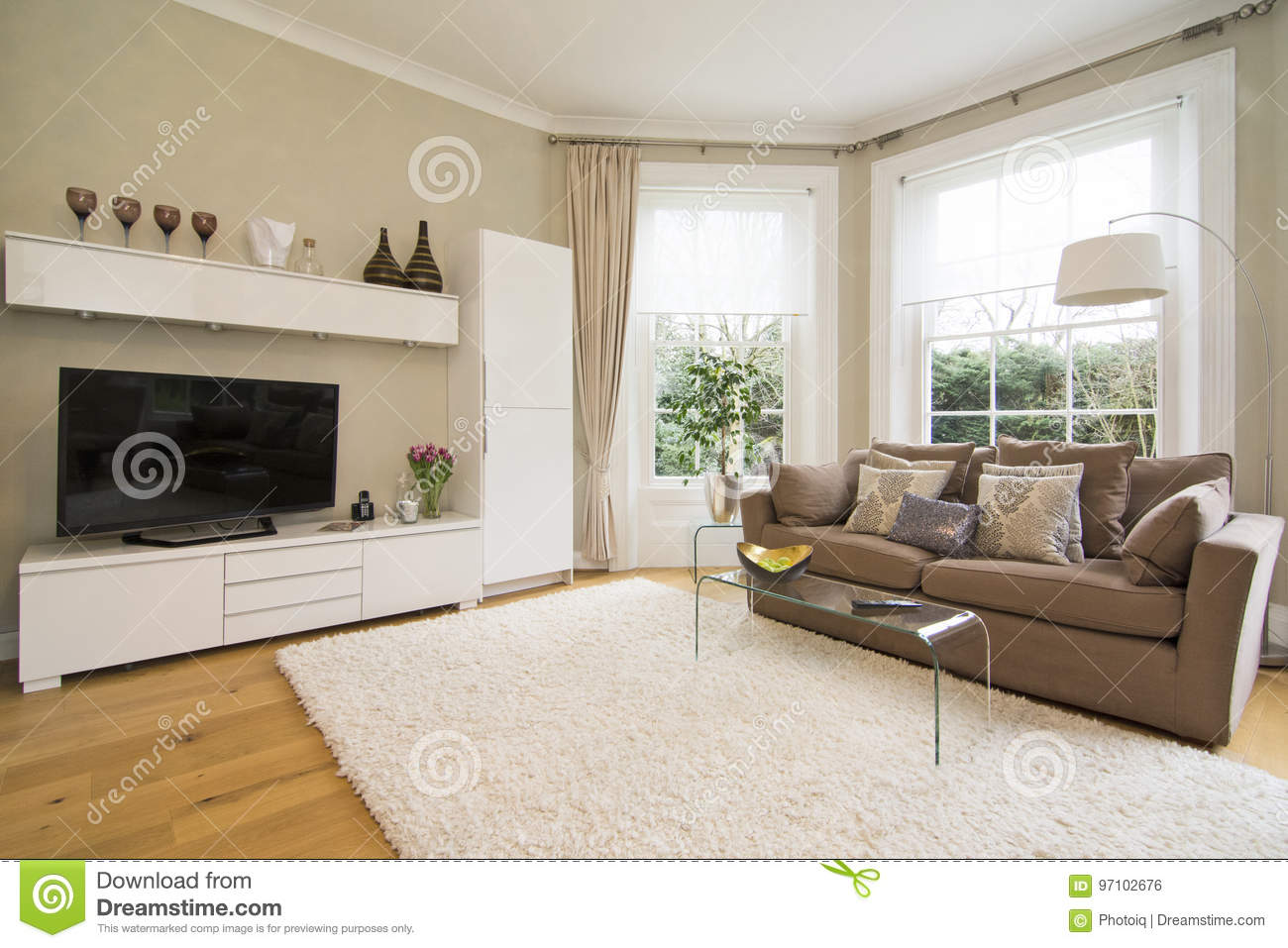 Classic Living Room With Classy Two Seater Sofa Bed, Plasma Tv A ...