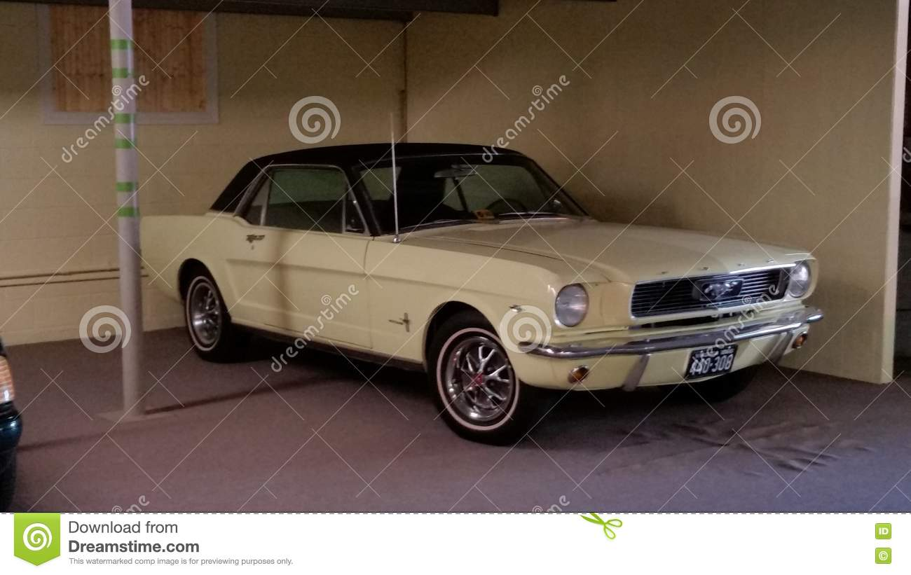Classic mustang editorial stock image. Image of shop - 81425694