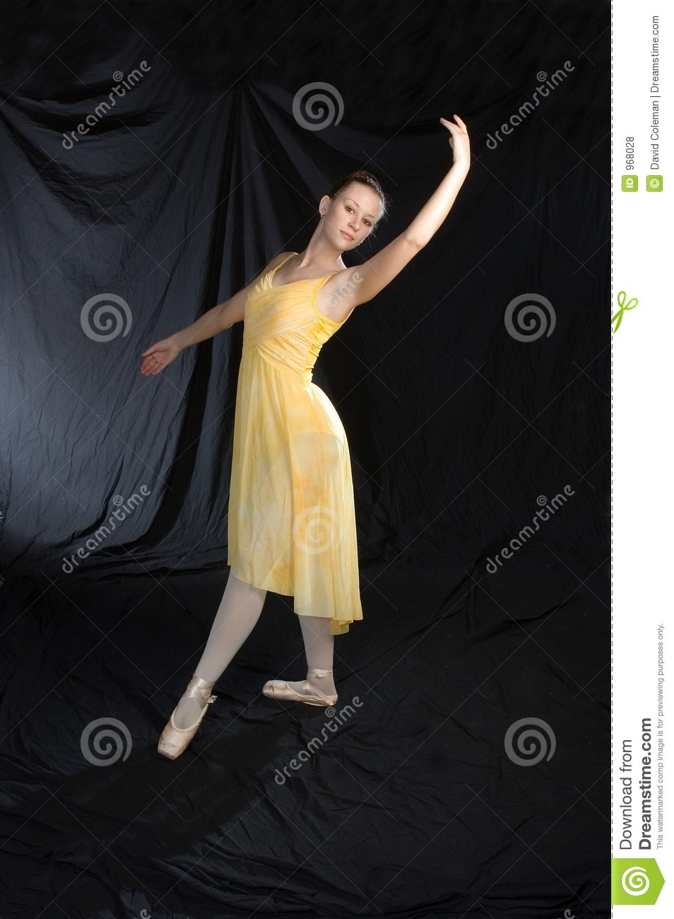 Classical Ballet Pose Royalty Free Stock Photos Image
