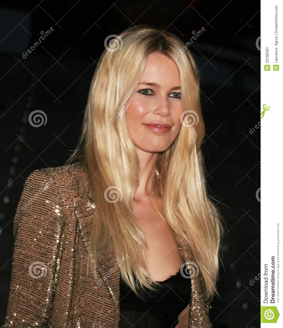 Claudia Schiffer nudes (55 fotos), images Sexy, Snapchat, butt 2016