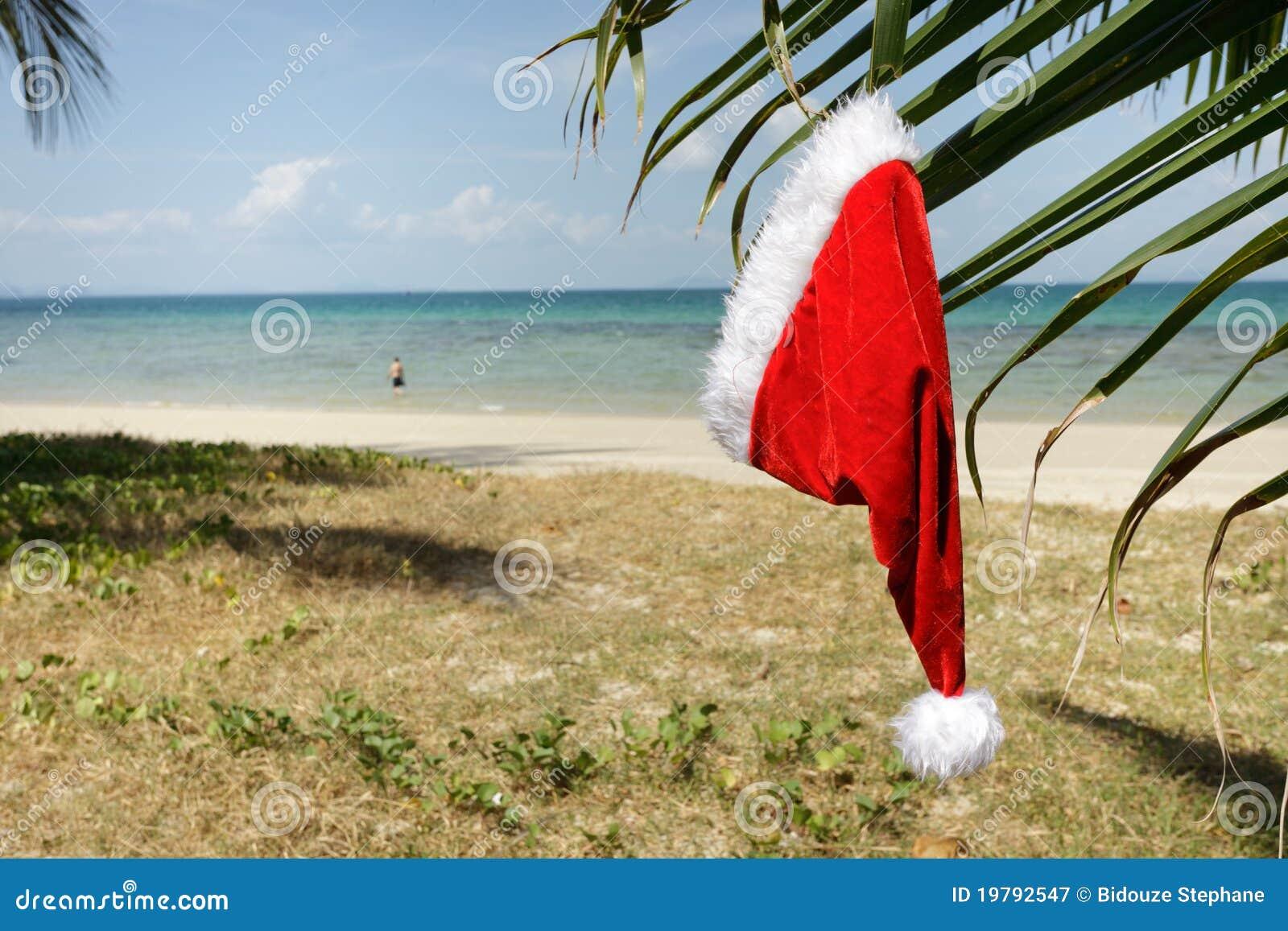 Claus hatt tropiska santa