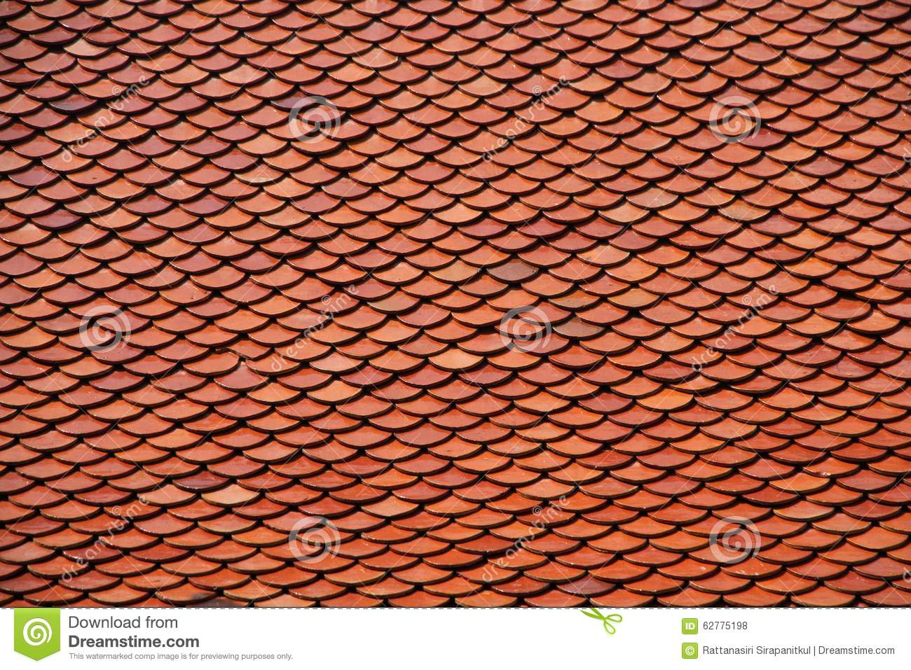 Clay Roof Tiles Stock Image 25560835