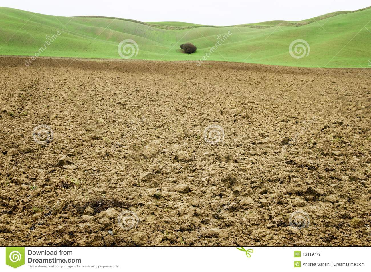 Clay soil field with green background in tuscany stock for Soil and green