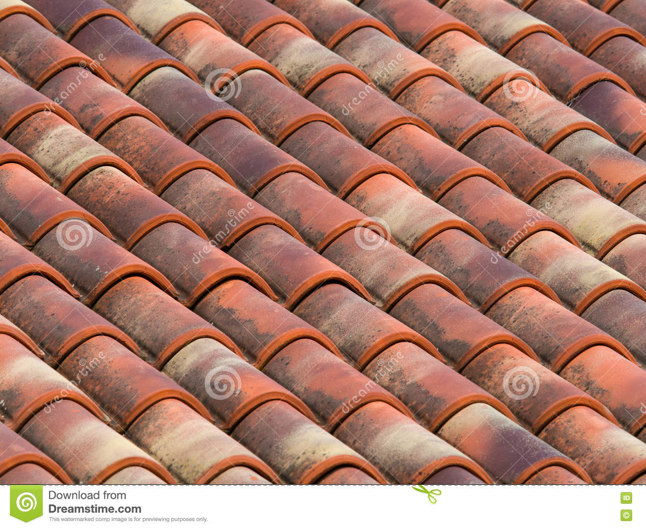 Clay Tiles On An Italian Roof Stock Image