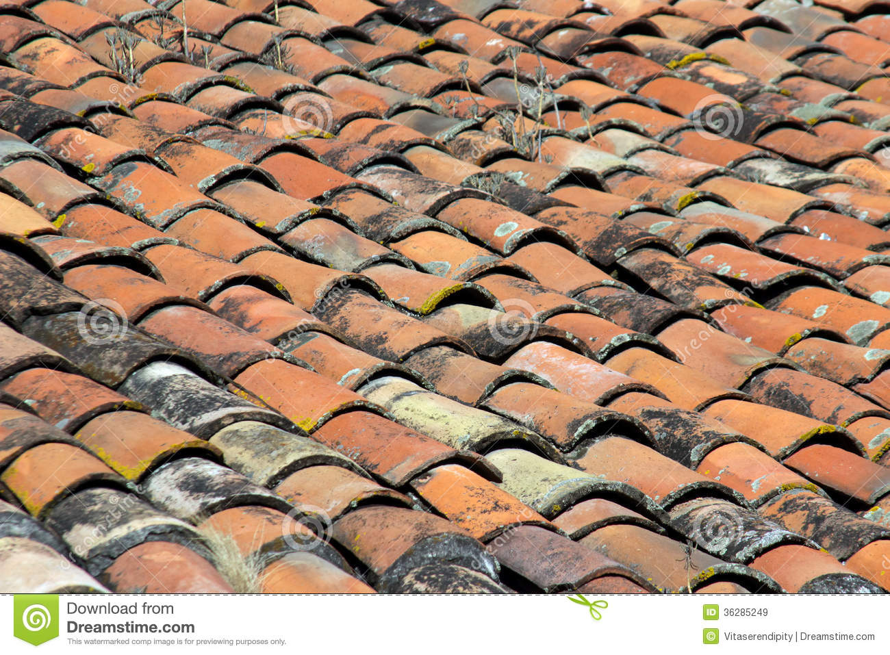 Clay Tiles Of Roof Royalty Free Stock Images Image 36285249