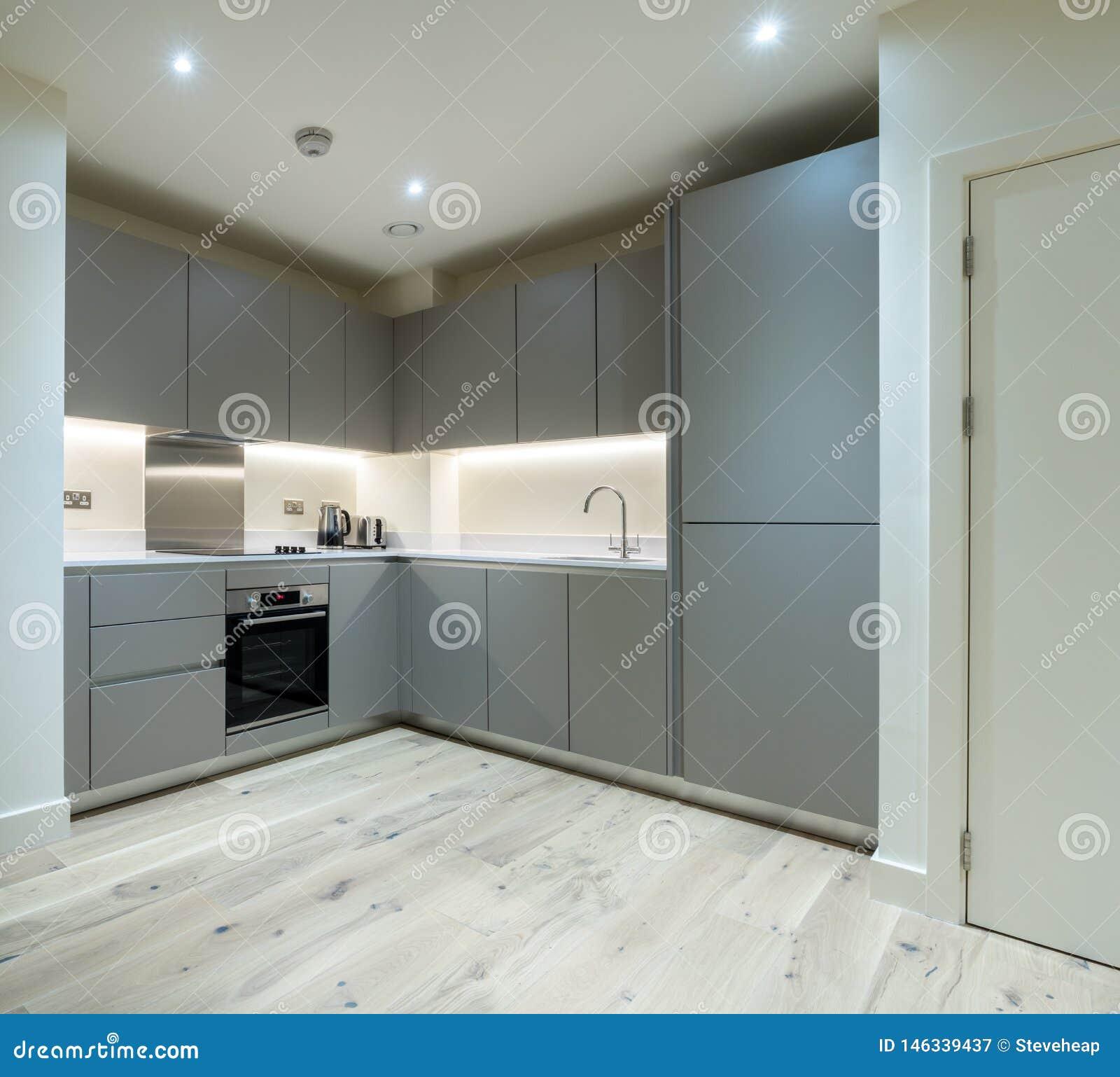 Modern Grey Built In Kitchen And Appliances In Modern ...