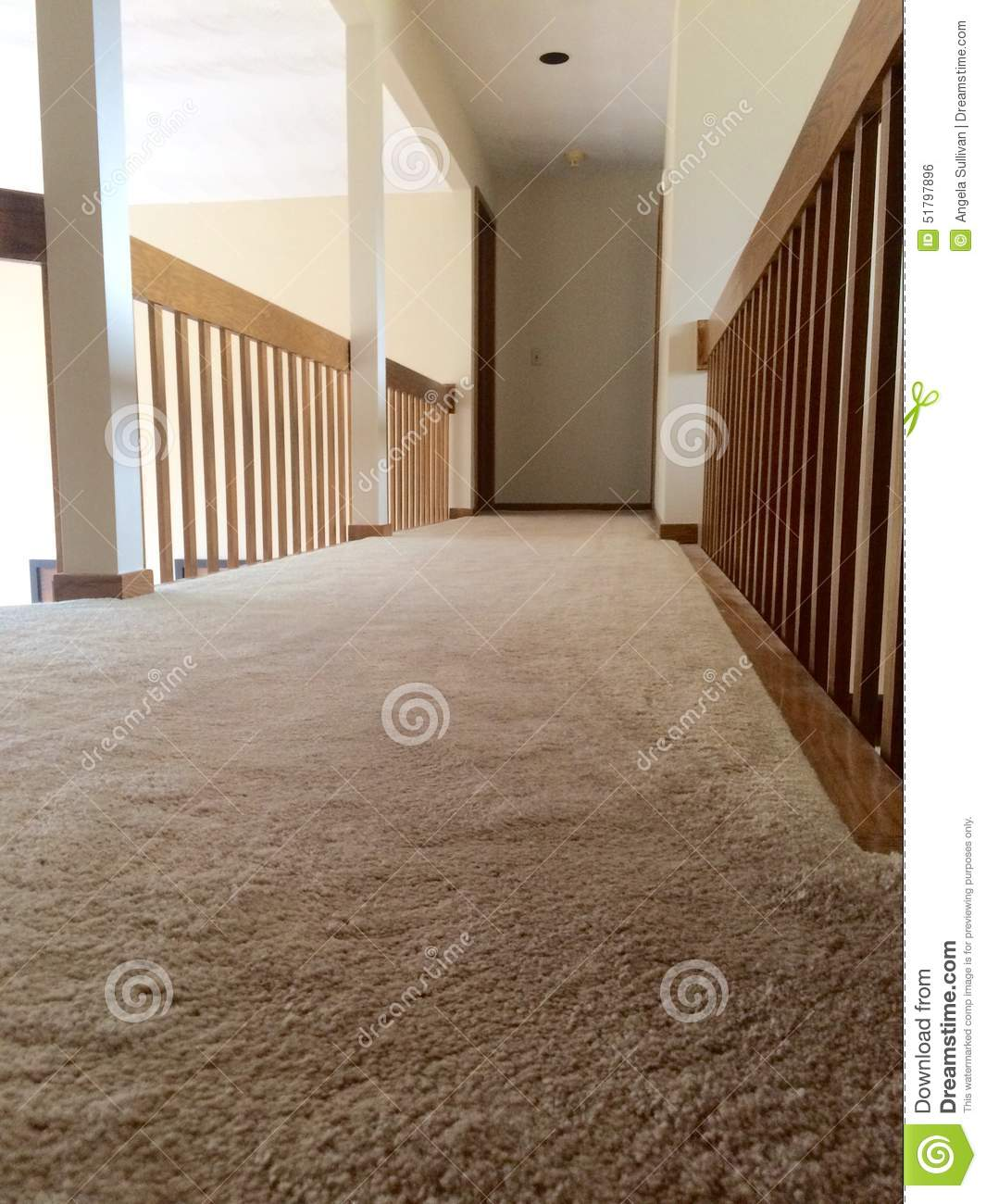 Clean Plush Carpet In Hallway Stock Photo Image 51797896