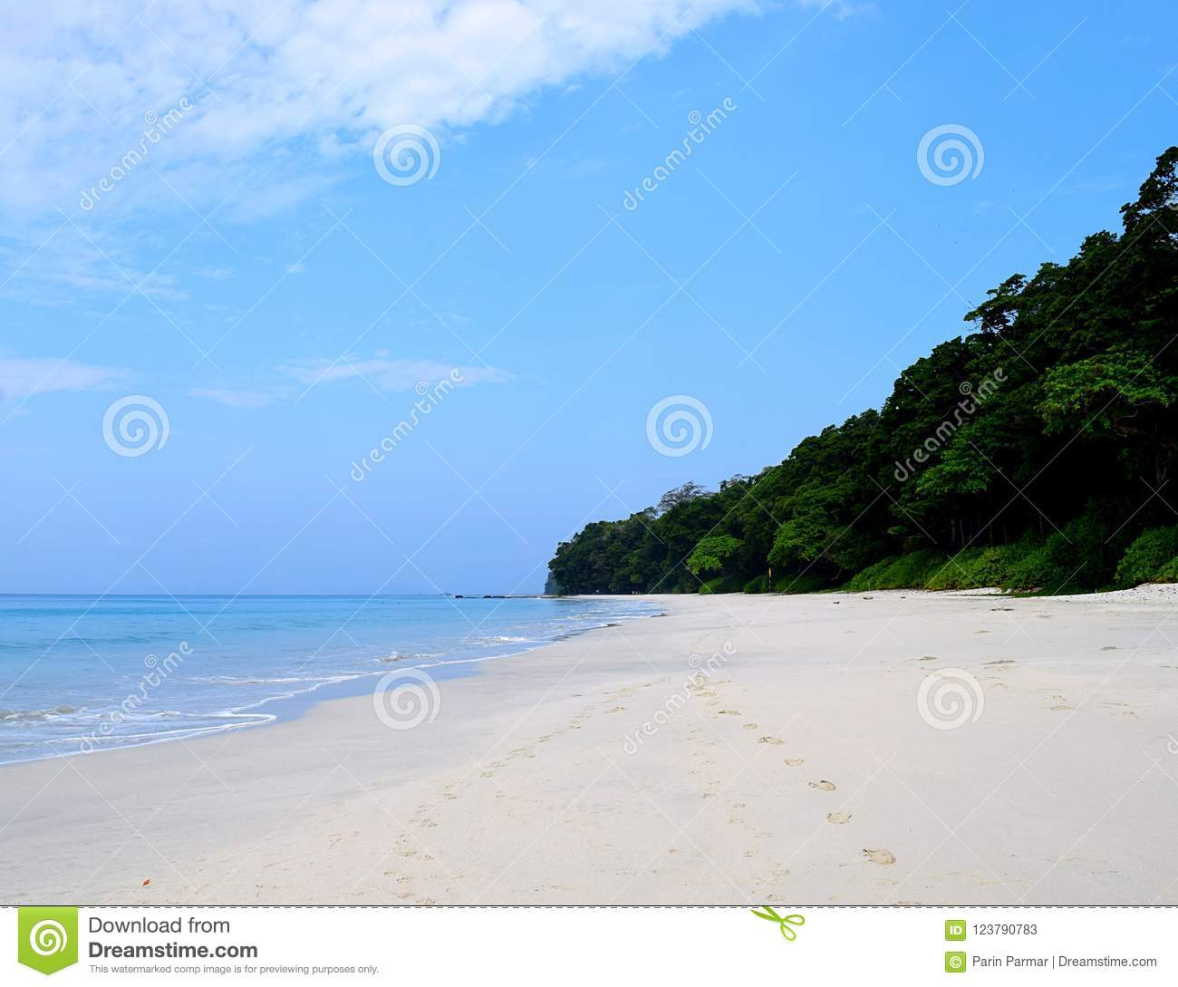 Havelock Island: Clean White Sandy Beach And Coastal Green Plants