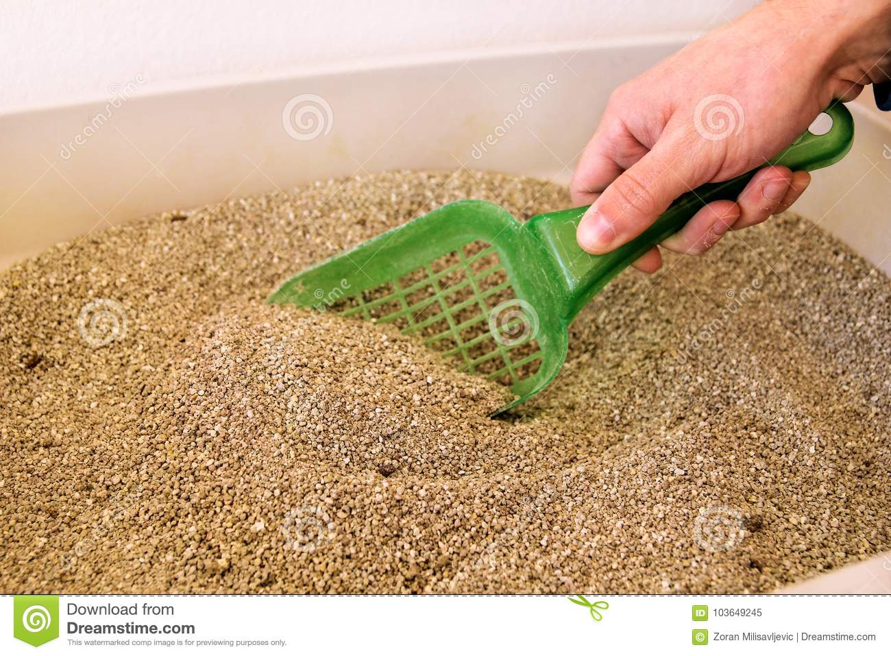 Cleaning cat litter box