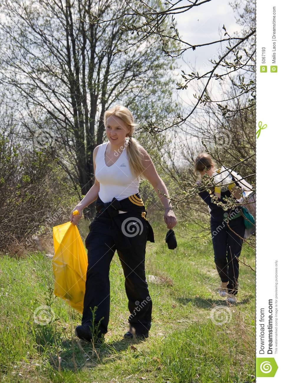 Cleaning forest