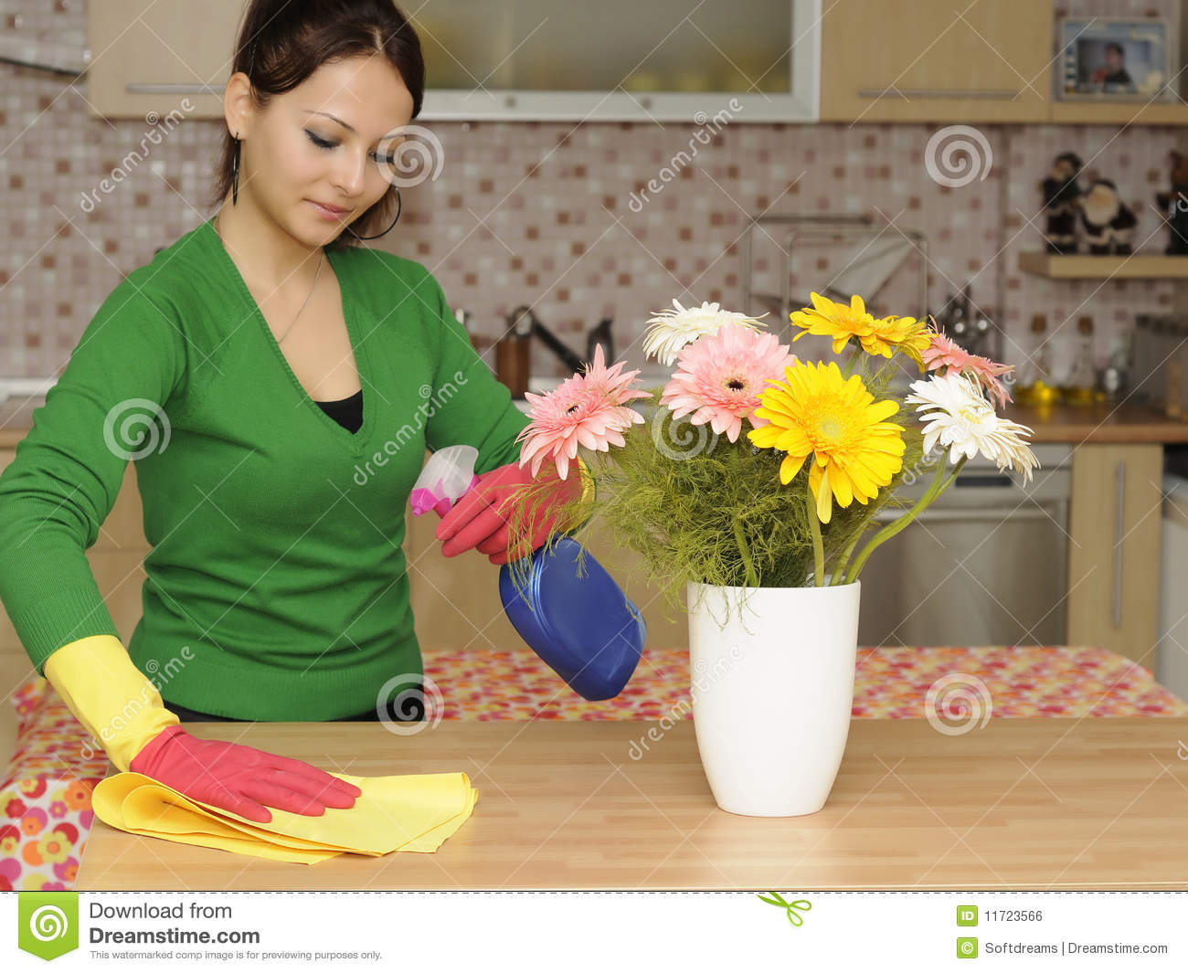 Cleaning The House Royalty Free Stock Image Image 11723566
