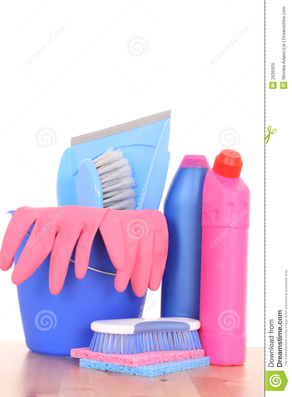 Cleaning House Royalty Free Stock Photo Image 2936905