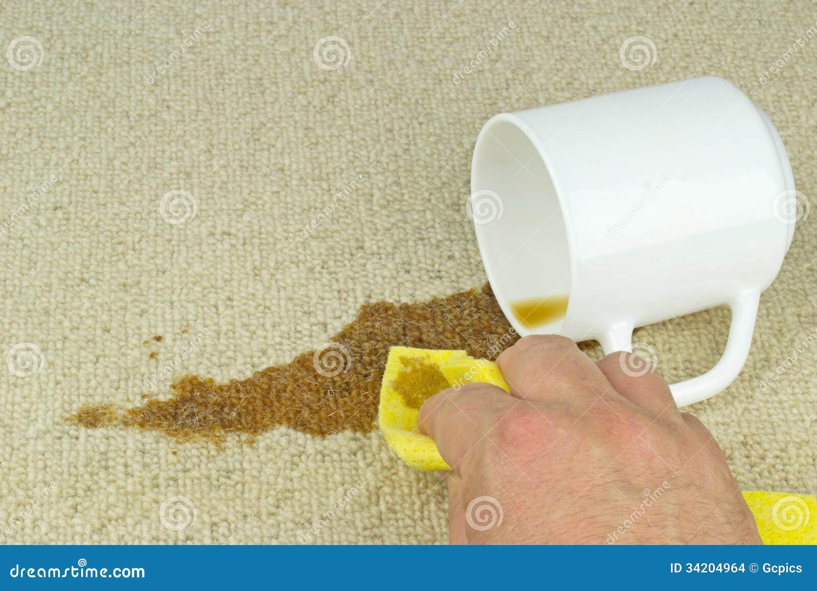 Cleaning Kawowa Plama Od Dywanu Zdjęcie Stock Obraz