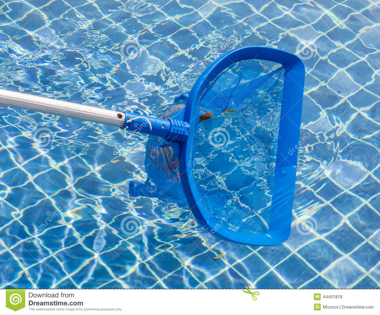 Cleaning And Maintenance Swimming Pool With Cleaning Net Blue S Stock Image Image 44401819