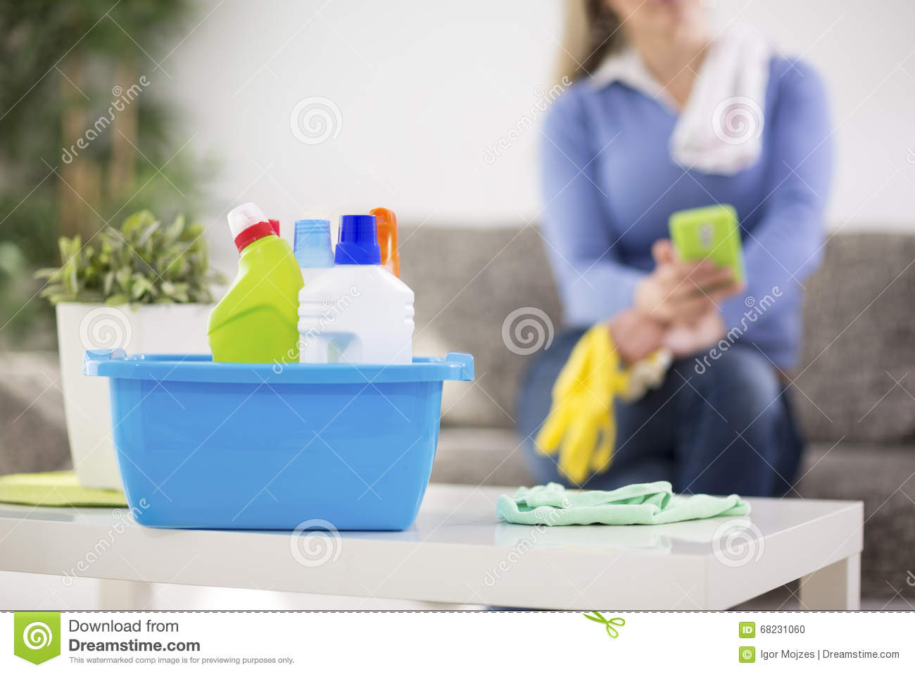 Cleaning products royalty free stock image cartoondealer for House cleaning stock photos