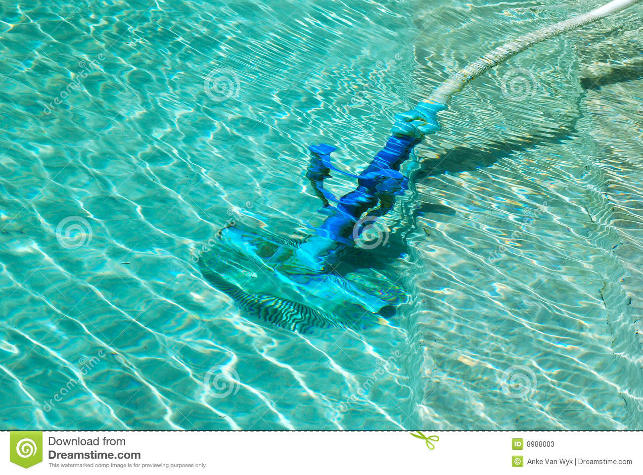 Cleaning swimming pool stock photos image 8988003 - How to clean a dirty swimming pool ...