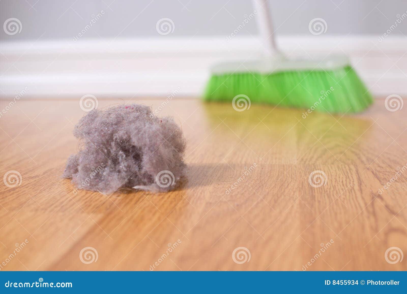 Cleaningfjäder