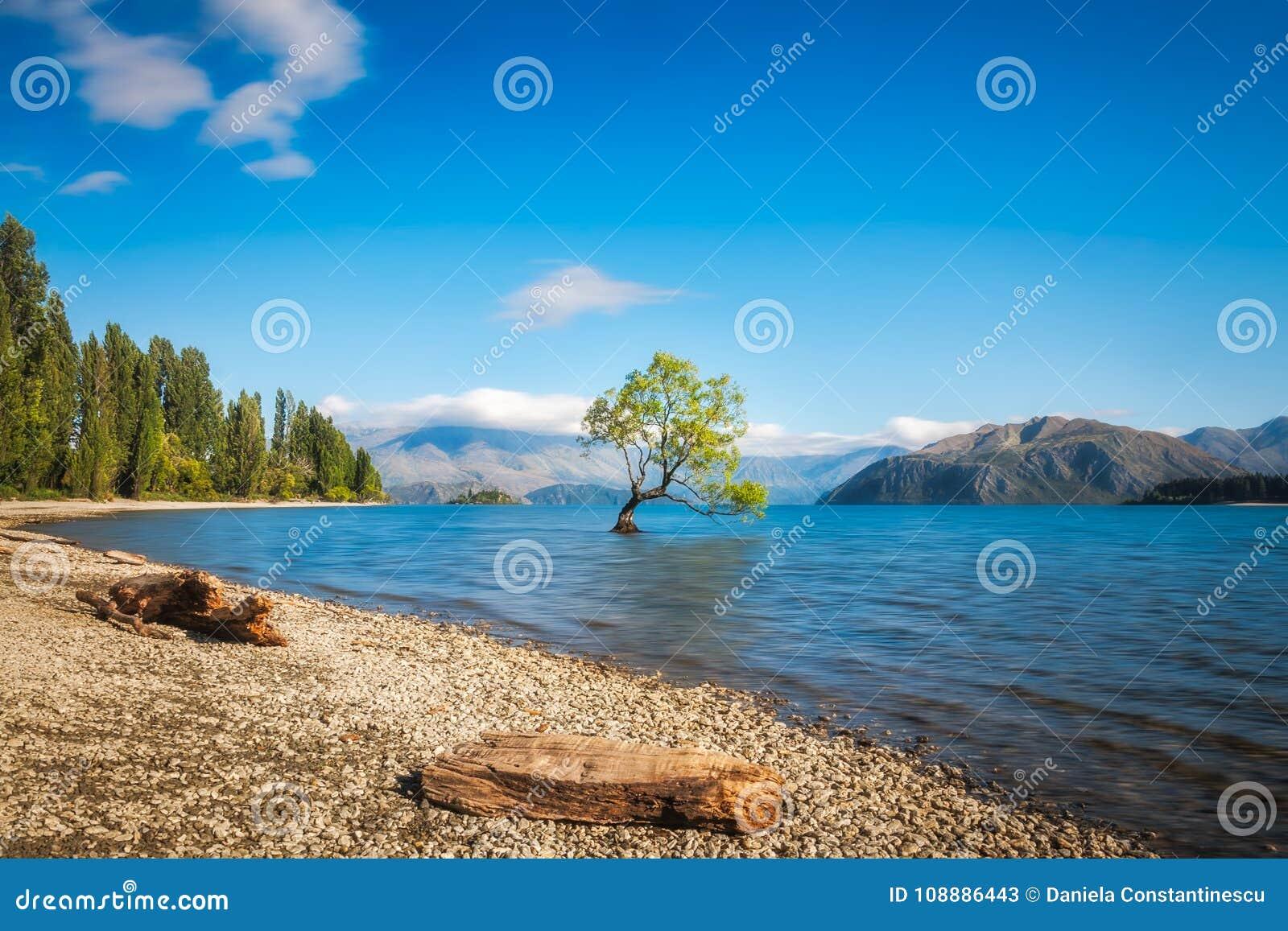 Clear blue morning at lake Wanaka