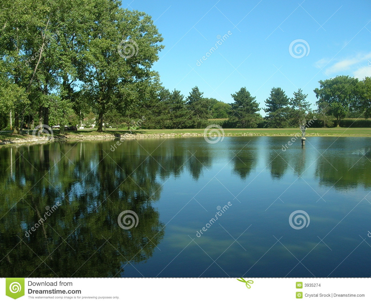 Clear Blue Pond Stock Photo Image Of Peace Tree Water
