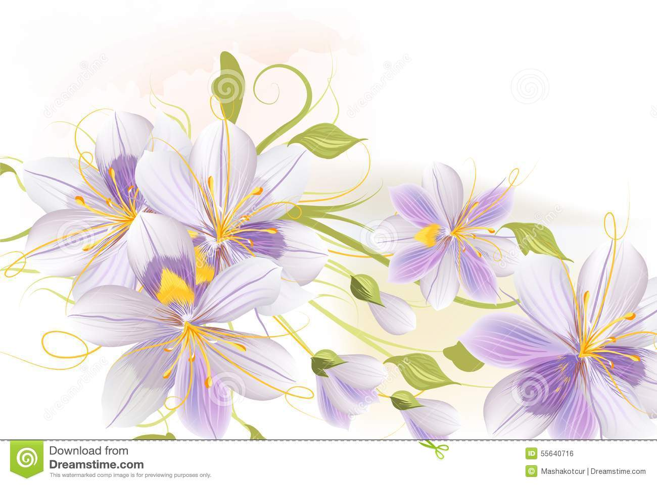 clear floral background with hyacinth flowers stock vector