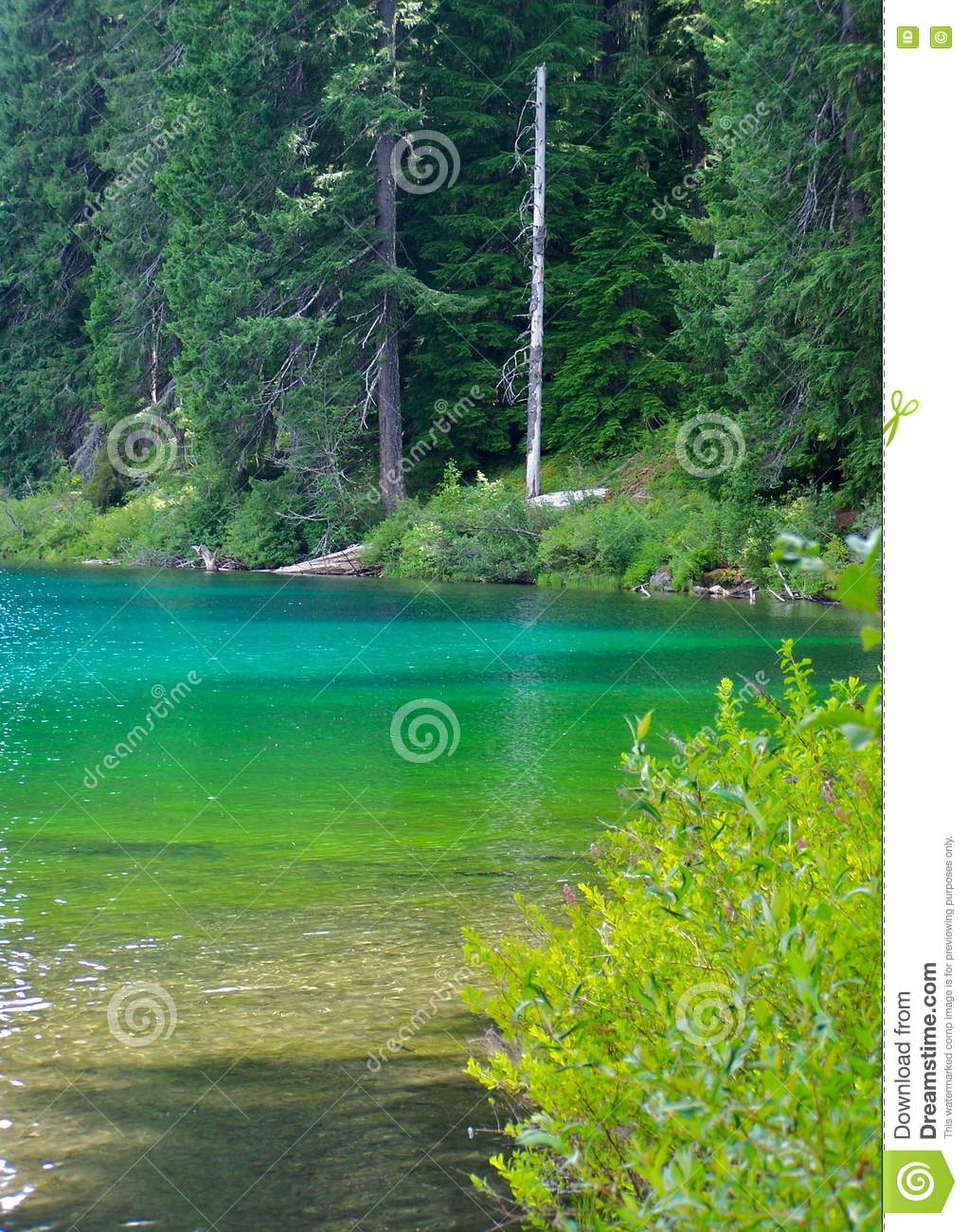 Clear Lake Oregon Stock Photo Image Of Shore Mountains