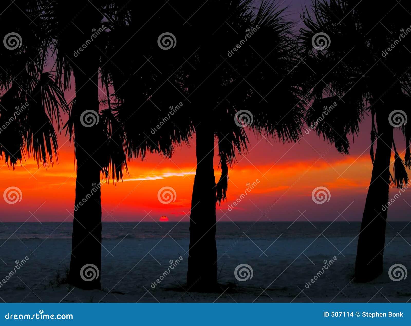 Clearwater słońca