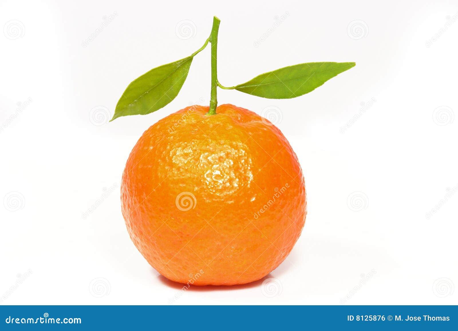 Clementine świeży