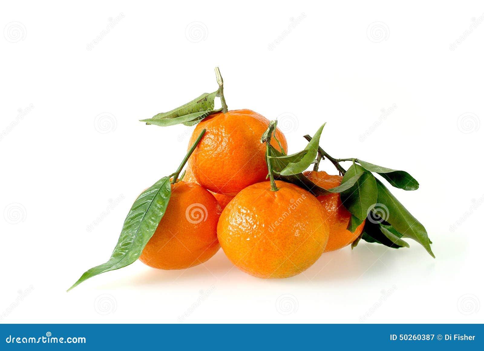 clementine fruit avec des feuilles photo stock image 50260387. Black Bedroom Furniture Sets. Home Design Ideas