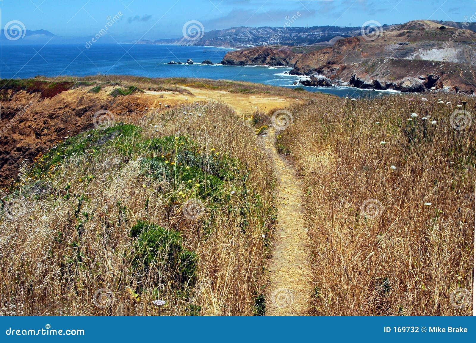 Cliff Pathway