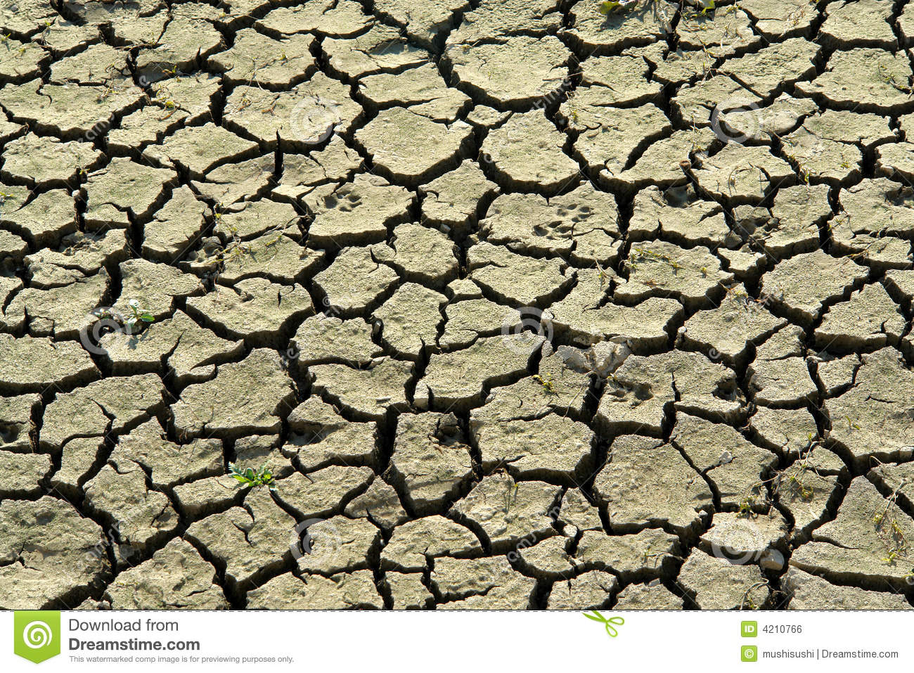 climate change images free climate change royalty free stock image image 4210766 1066