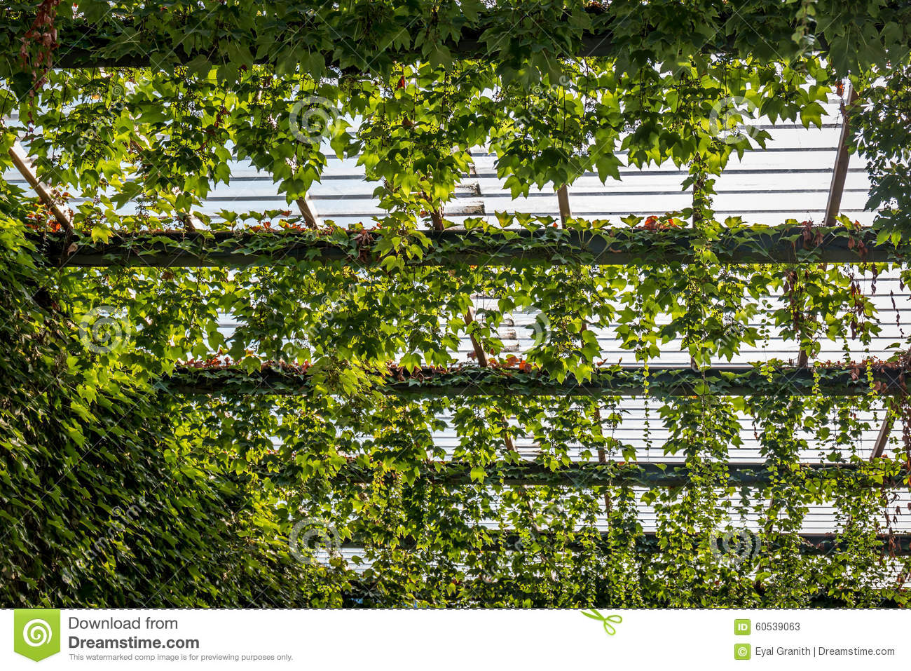 Plant Roofs & Plant Roofs. Yes You Can Actually Plant A ...