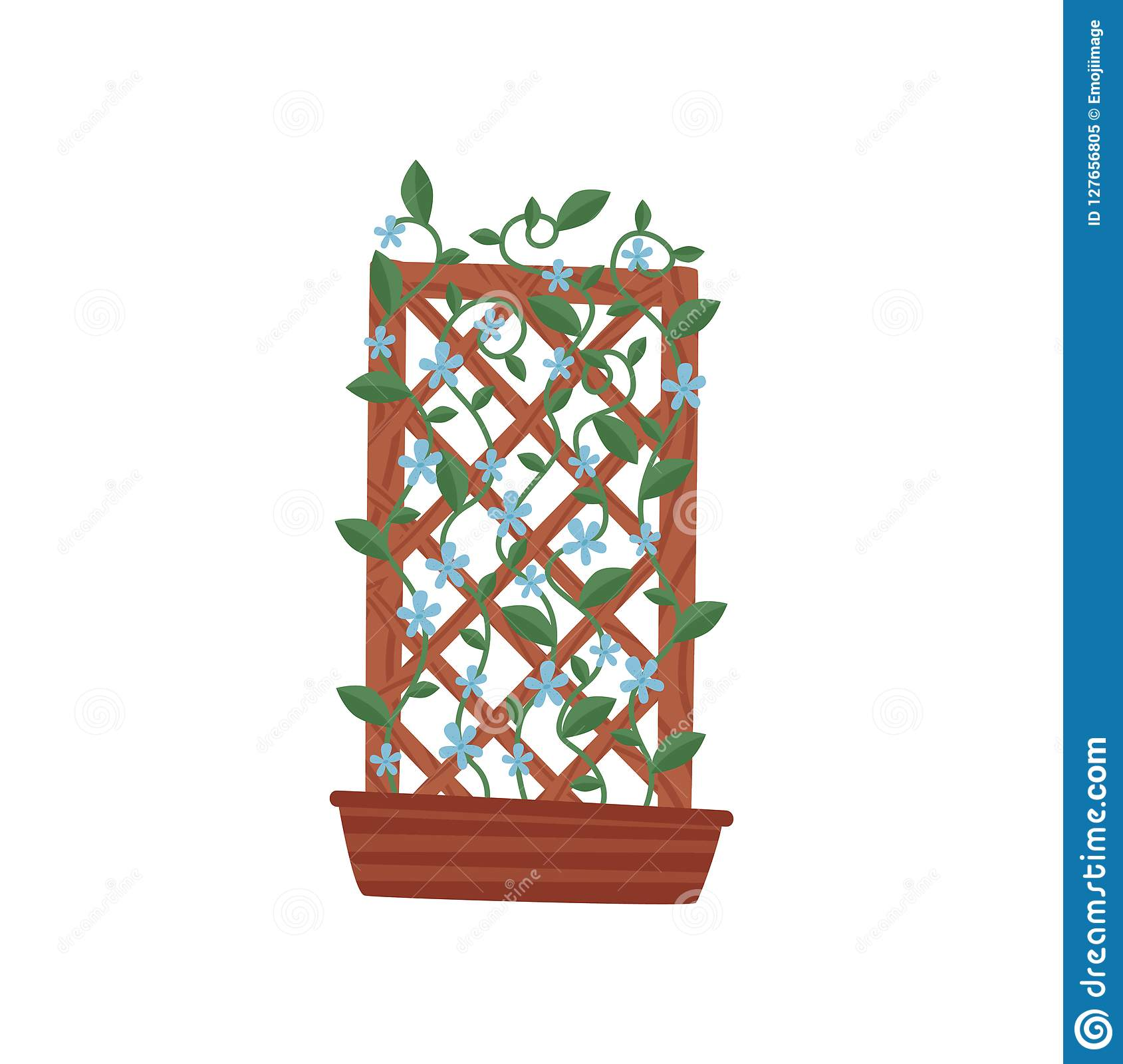 Climbing Plant With Small Blue Flowers In Brown Pot With Wooden
